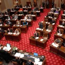 150108 WIR senate_convenes_33