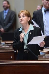 Sen. Bev Scalze (DFL-Little Canada) speaks on the Senate Floor May 7, 2015.